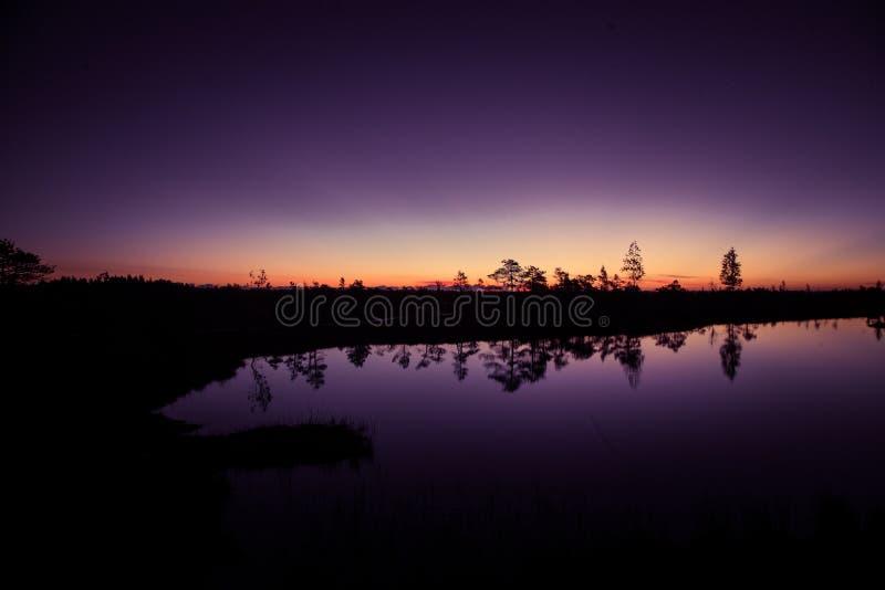 Een mooi, kleurrijk, artistiek landschap van een moeras in zonsopgang stock foto's