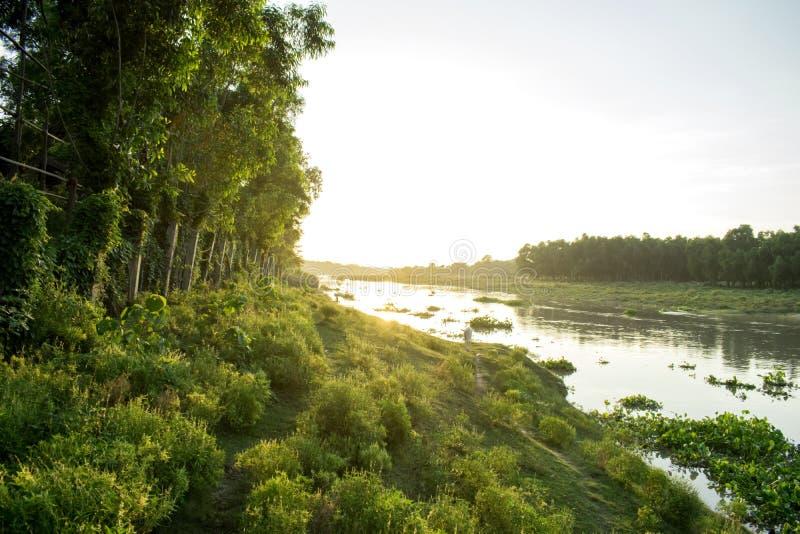 Een mooi landschap van een rivierbank bij zonnige middag royalty-vrije stock foto's