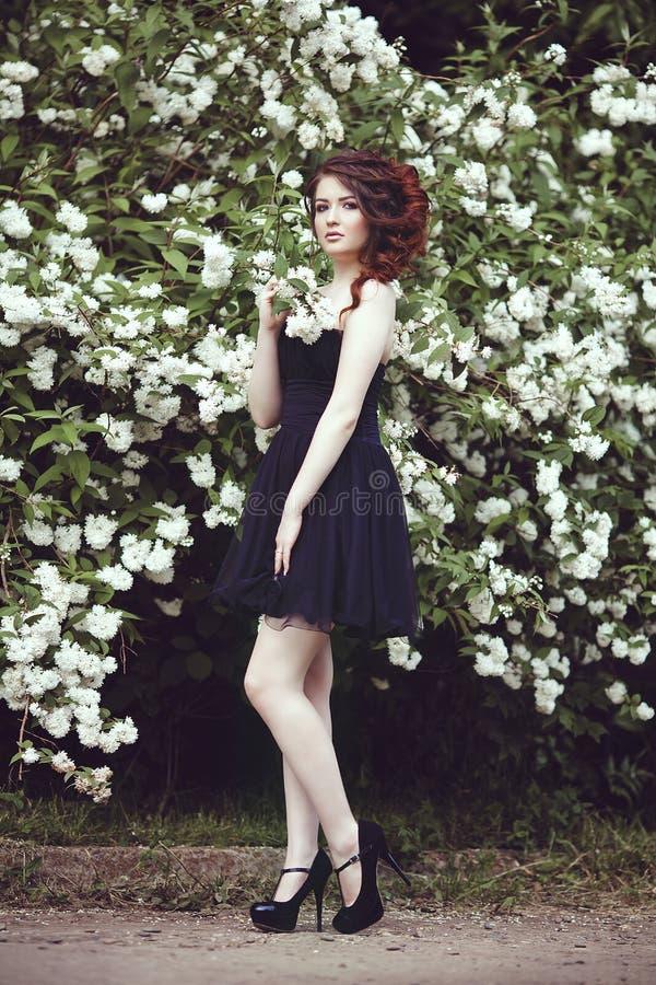 Een mooi meisje in een zwarte kleding stelt dichtbij een struik met witte bloemen stock afbeeldingen