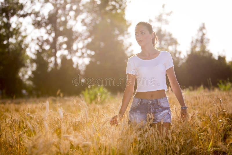 Een mooi meisje in een wheatfield op zonsondergang stock afbeelding