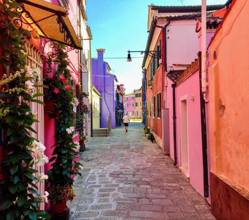 Een mooi smal hoogtepunt van de baksteenweg van oude kleurrijke huizen en bloemen in Burano, Italië, een eiland buiten Venetië royalty-vrije stock afbeelding