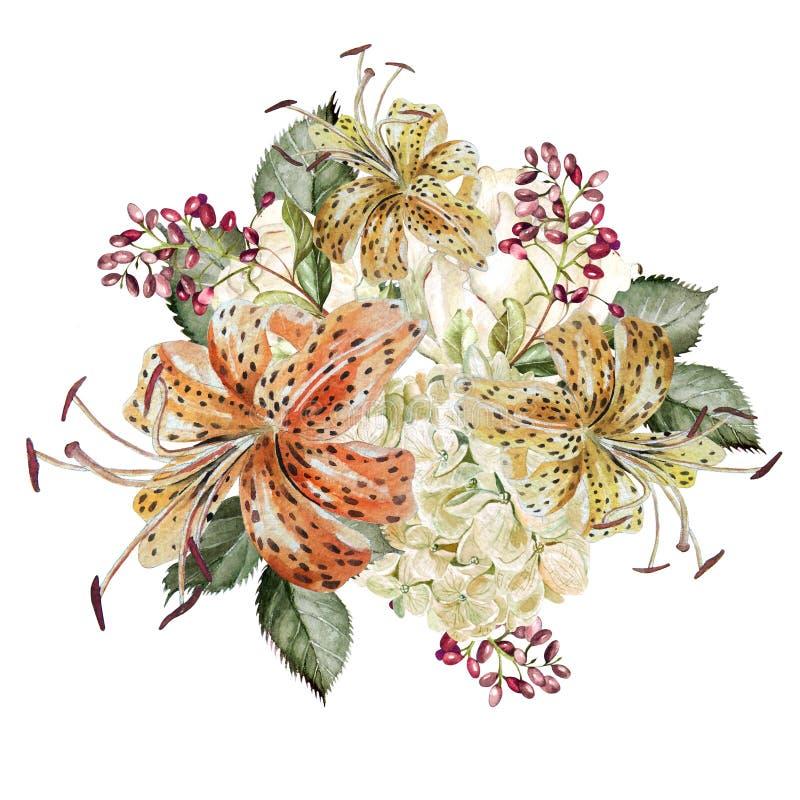 Een mooi waterverfboeket met hudrangea en lelies royalty-vrije illustratie
