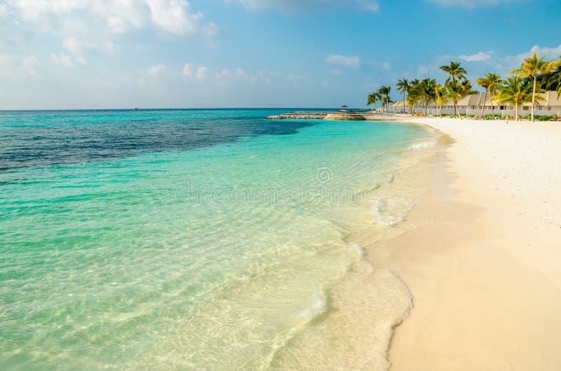 Een mooi zandig exotisch strand op één van de Maldivian eilanden stock foto's