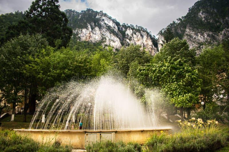 Een mooie artesische fontein, ergens dichtbij de bergen Een mooie de zomerdag in het park Vele groene bomen en vele installaties stock foto