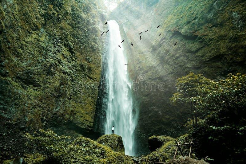 Een mooie en mooie waterval is zulk een kalmte die ik van deze aard krijg royalty-vrije stock afbeeldingen