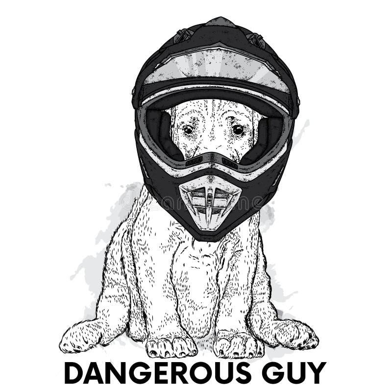 Een mooie hond in een motorfietshelm Rasecht puppy Vectorillustratie voor een prentbriefkaar of een affiche stock illustratie