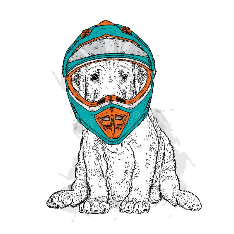 Een mooie hond in een motorfietshelm Rasecht puppy Vectorillustratie voor een prentbriefkaar of een affiche royalty-vrije illustratie