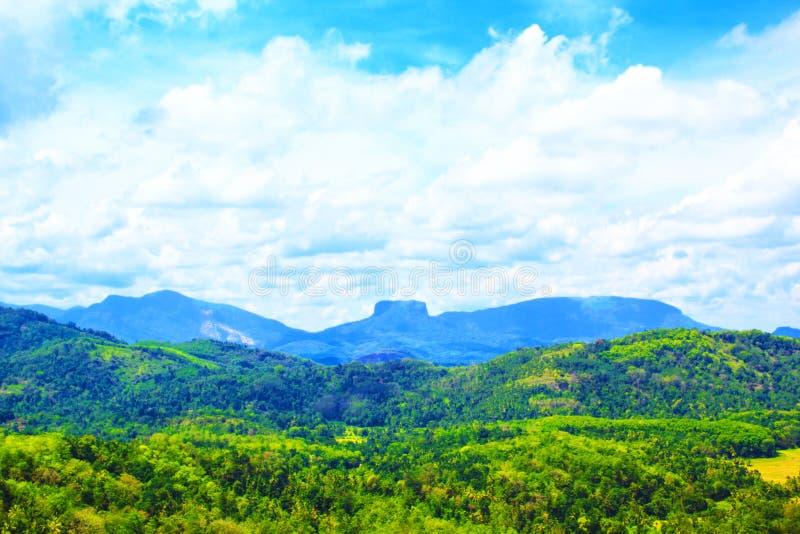 Een mooie mening van de tropische heuvels van Sri Lanka en zet Sigiriya op stock afbeelding