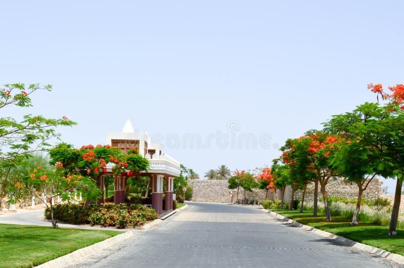 Een mooie wegsteeg met een steendekking met bomen met rode bloemen en groene bladeren in een tropisch warm land, een toevlucht stock afbeelding
