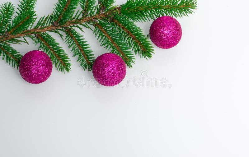 Een mooie witte achtergrond waarop een tak van een Kerstboom met Nieuwjaar` s purpere ballen ligt Plaats voor tekst en stock fotografie