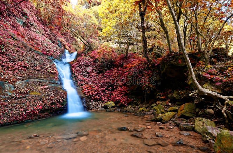 Een mooie zijdeachtige waterval die onderaan de bemoste rotsen in een vijver in een geheim ravijn tuimelen stock afbeelding