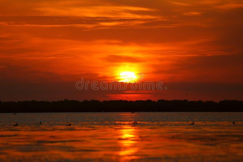 Een mooie zonsopgang op een meer in de Delta van Donau royalty-vrije stock afbeelding