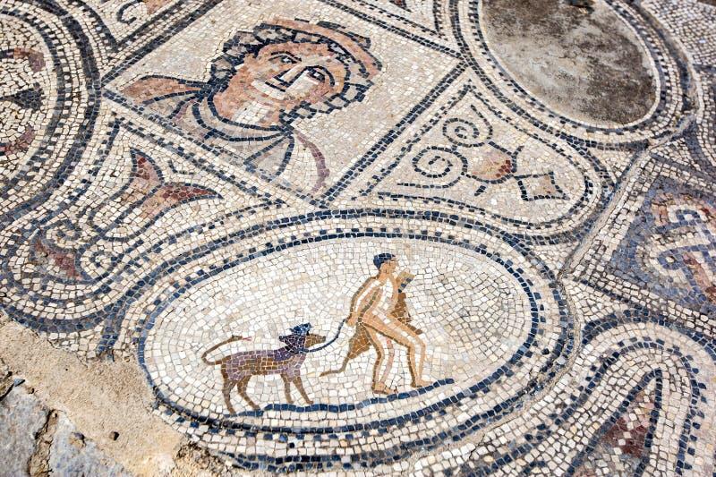 Een mozaïek in Volubilis in Marokko die Hercules tonen die en met zijn huisdier Cerberus, een drie-geleide hond vangen terugkeren stock fotografie