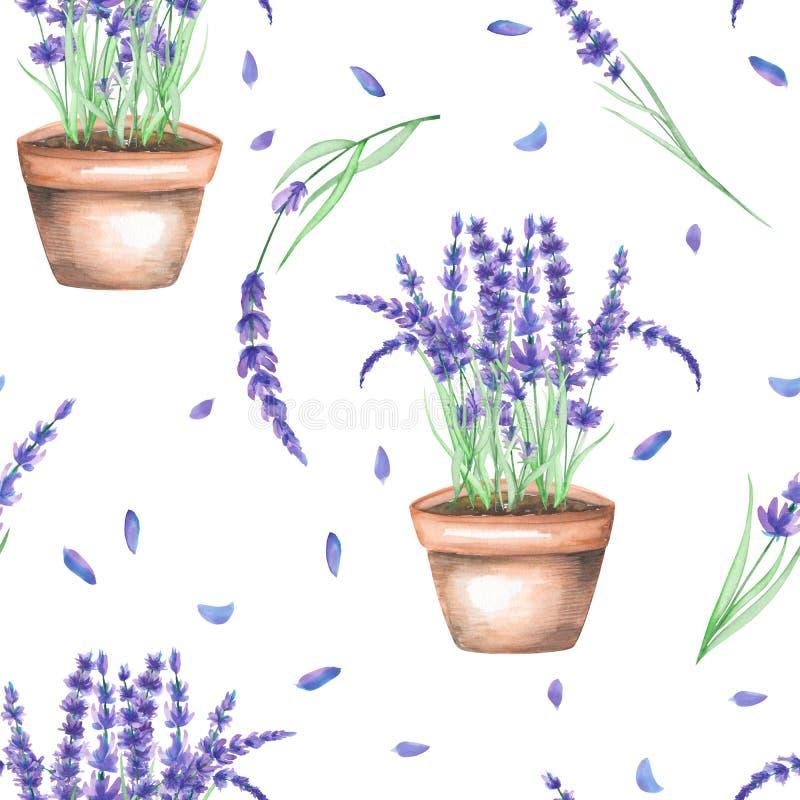 Een naadloos patroon met de waterverflavendel bloeit in een pot stock illustratie