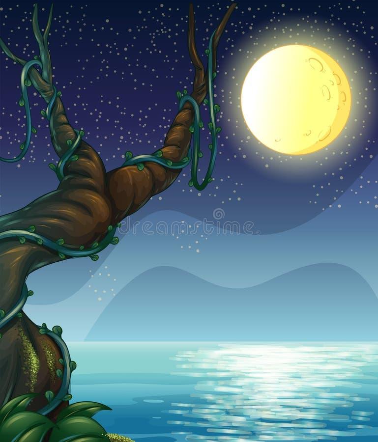 Een nachthoogtepunt van sterren stock illustratie