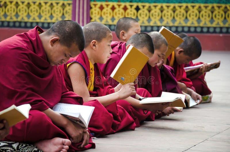 Een Niet geïdentificeerde Tibetaanse lama bidt mantra bij Ramtek-Klooster royalty-vrije stock fotografie