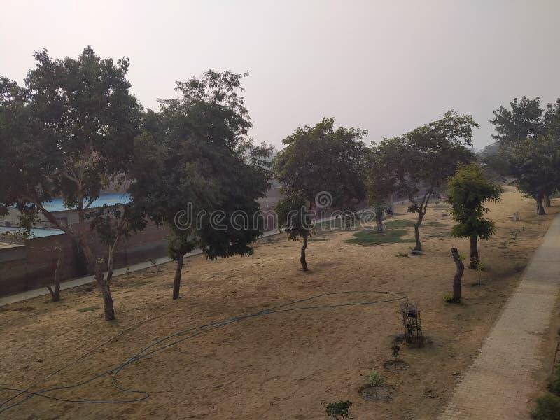 Een niet-georganiseerd park in Bhiwani stock afbeeldingen
