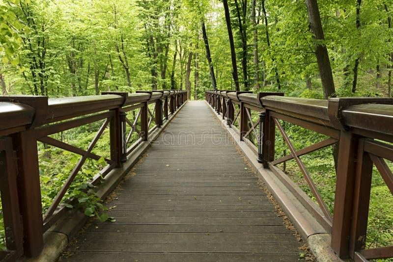 Een nieuwe grote brede houten brug in het park, die de kloof kruisen royalty-vrije stock afbeelding