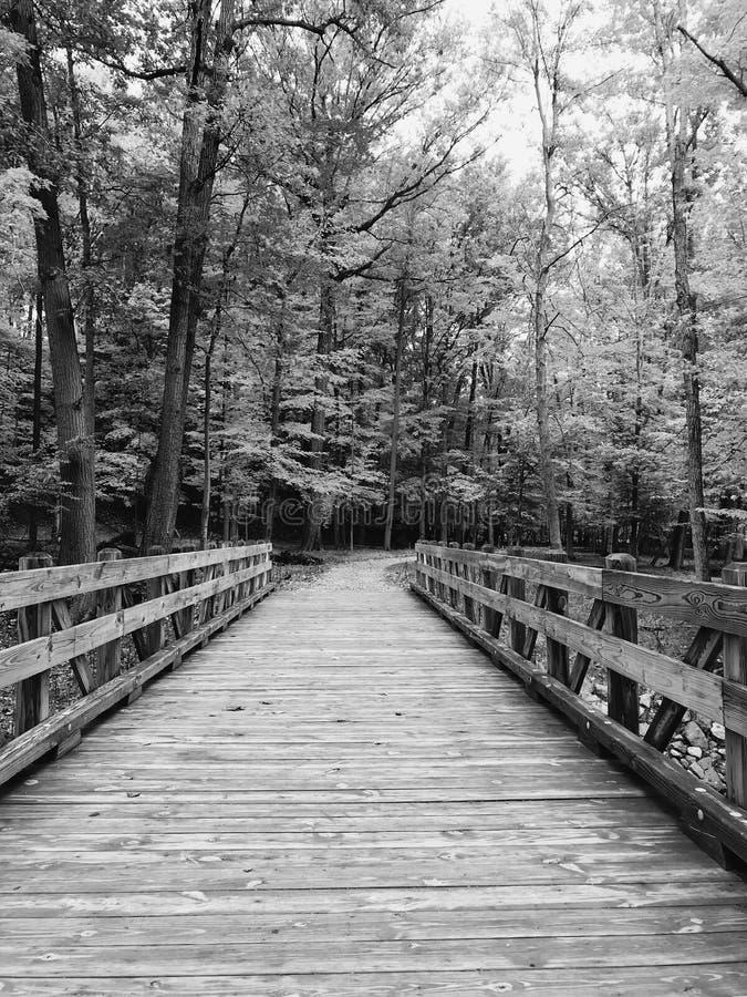 Een nieuwe houten brug in Cleveland MetroParks - PARMA - OHIO royalty-vrije stock afbeeldingen