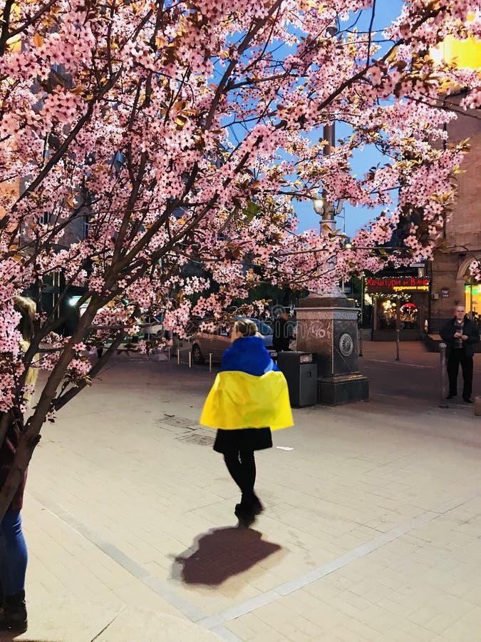 Een Oekraïense patriot onder kers komt in het hart van Maidan - KYIV tot bloei - de OEKRAÏNE stock afbeeldingen
