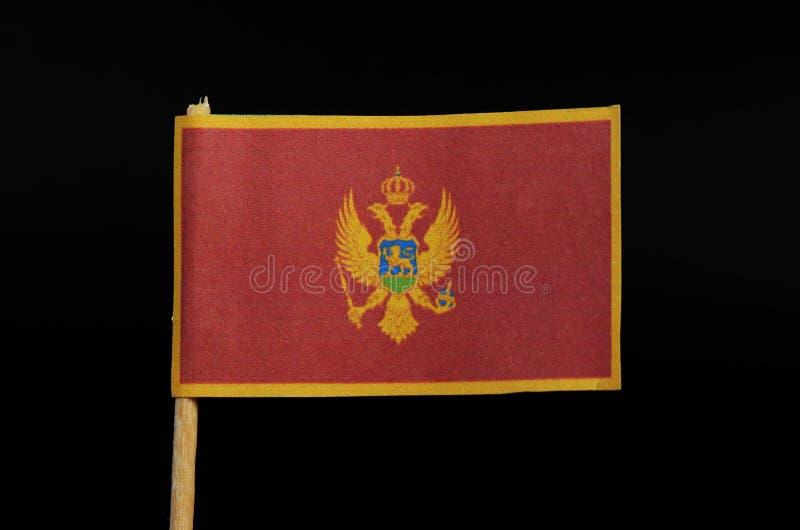 Een officiële en nationale vlag van Montenegro op tandenstoker op zwarte achtergrond Een rood die gebied door een gouden grens wo stock foto's