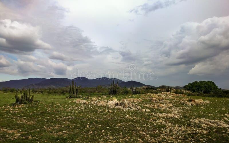 Een Open Gebied dichtbij Magdalena Ocotlan, Oaxaca royalty-vrije stock foto's