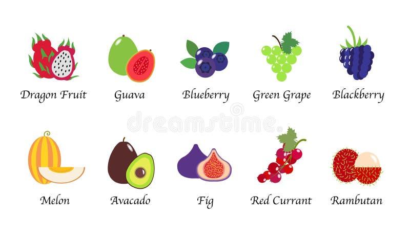 Een Organisch fruit van de aardgezondheid isoleerde vectorinzamelingsreeks vector illustratie