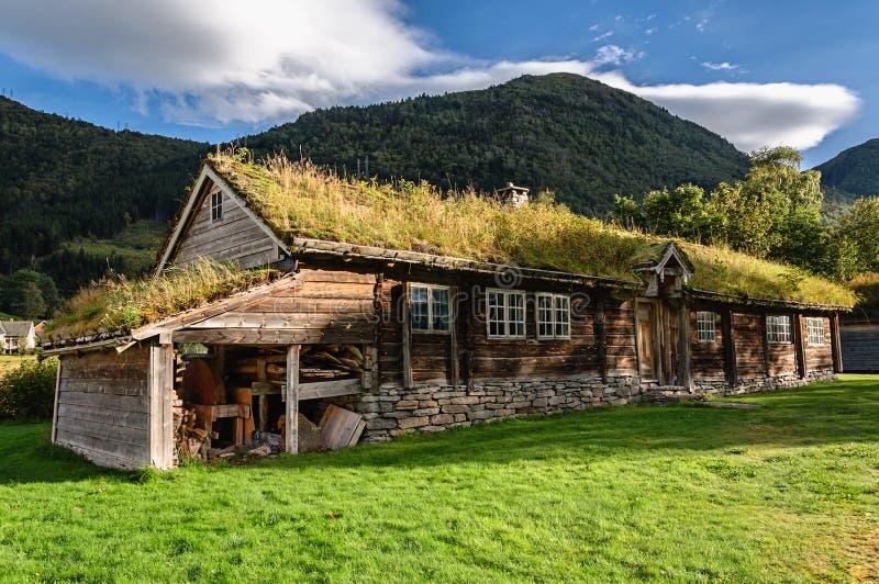 Ongebruikelijk Huis Met Gras Op Het Dak Noorwegen Stock