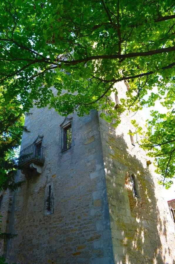 Een oude die baksteentoren door bomen wordt helft-verborgen stock foto
