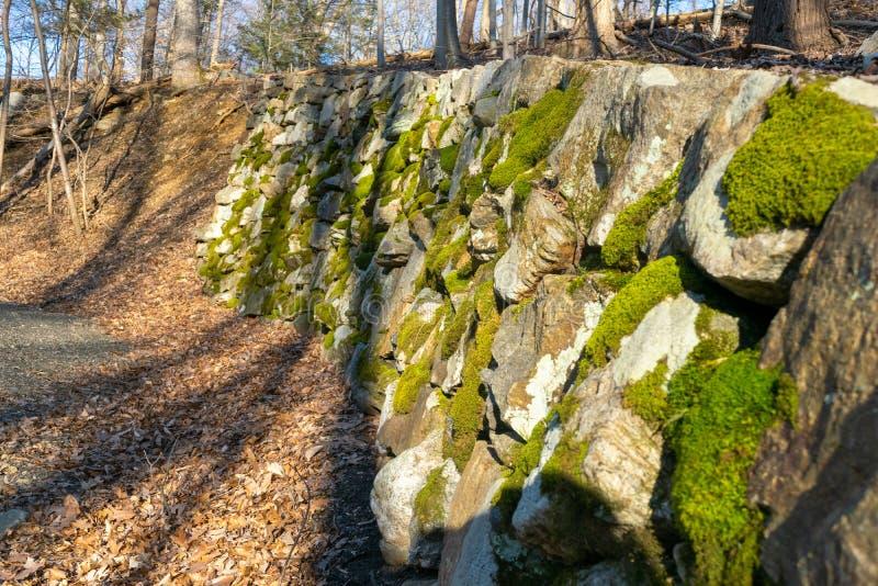 Een oude die muur van mos-behandelde stenen naast een kleine bosweg wordt gemaakt royalty-vrije stock foto