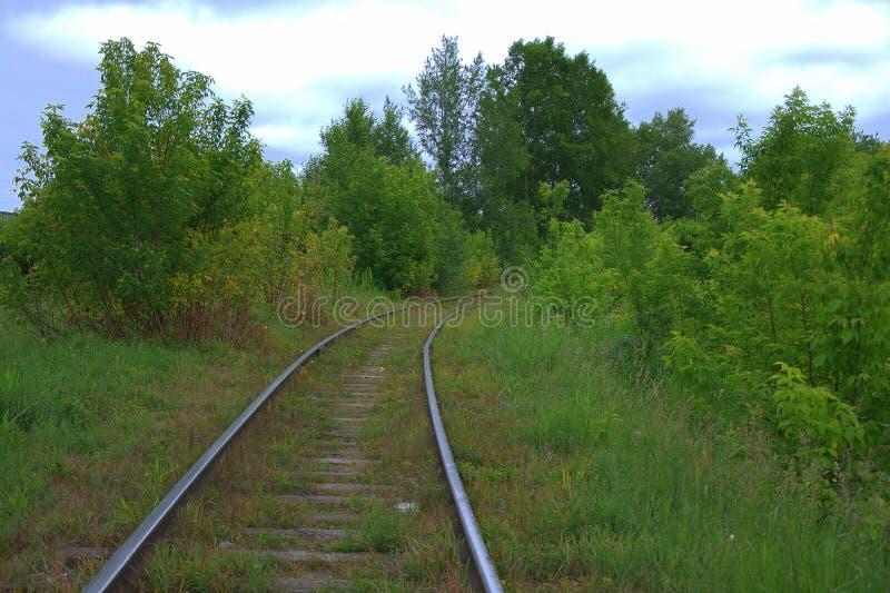 Een oude en verlaten spoorlijndraaien door een de zomer boslandschap stock foto
