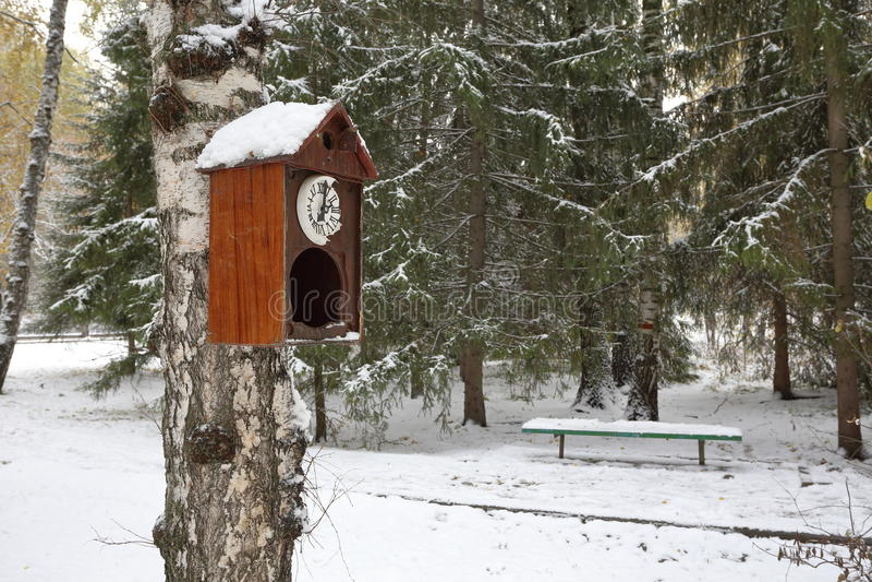 Een oude muurklok met koekoek als vogelhuis in het de winterpark royalty-vrije stock foto