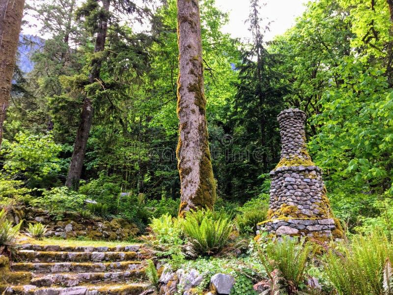 Een oude rotsachtige die trap in mos en interessante steenspits wordt behandeld die door een oud de groei altijdgroen bos leiden royalty-vrije stock afbeeldingen