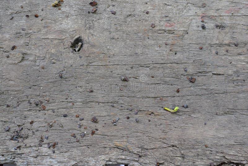 Een oude saaie droge houten achtergrond met kleine stenen, zoals crumbs van grijze kleur royalty-vrije stock afbeelding