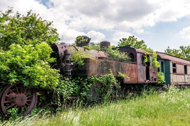 Een oude verlaten en roestige die stoomlocomotief met takken en groene struiken wordt overwoekerd die zich op een ongebruikte spo royalty-vrije stock foto