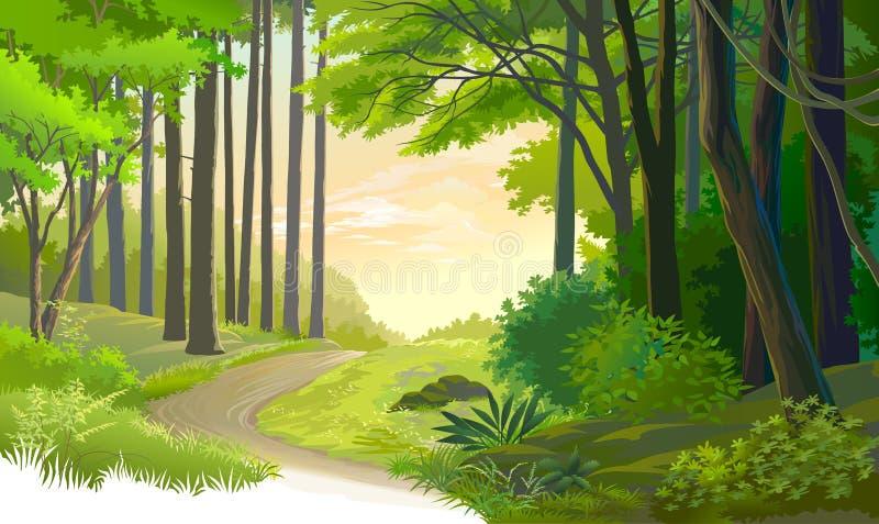 Een oude weg door een oud bos stock illustratie