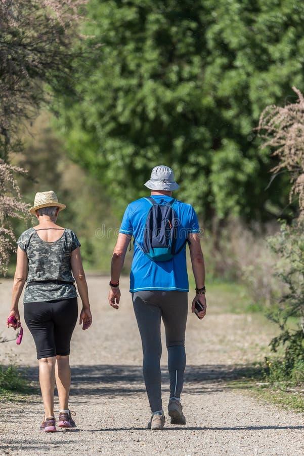 Een paar loopt op de weg van een bos stock afbeelding