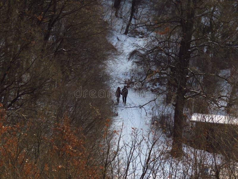 Een paar, man en een vrouw die in het bos in de winter een lopen Somber de winter boslandschap royalty-vrije stock foto