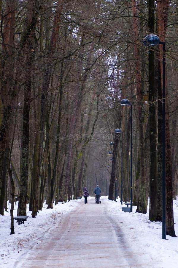 Een paar met een kinderwagen loopt door een sneeuwpark stock afbeeldingen