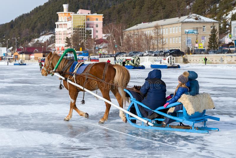 Een paard aan een ar wordt uitgerust berijdt toeristen op het ijs van Meer Baikal dat stock afbeelding