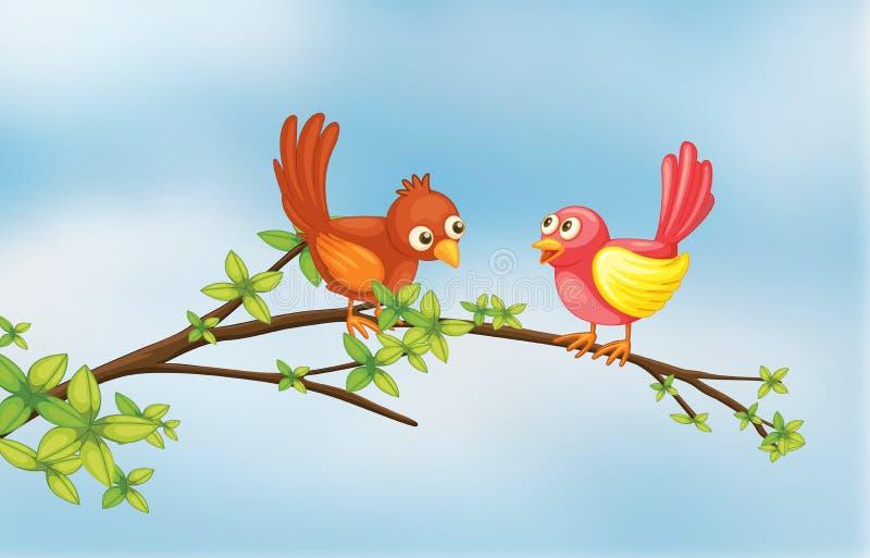 Een paarvogel royalty-vrije illustratie