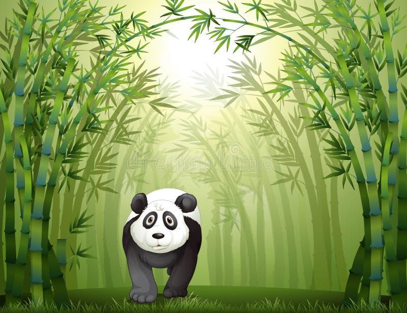 Een panda draagt en een bamboebos vector illustratie