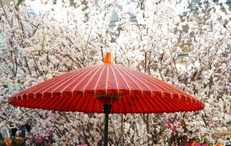 Een parasol- en kersenboom royalty-vrije stock afbeeldingen