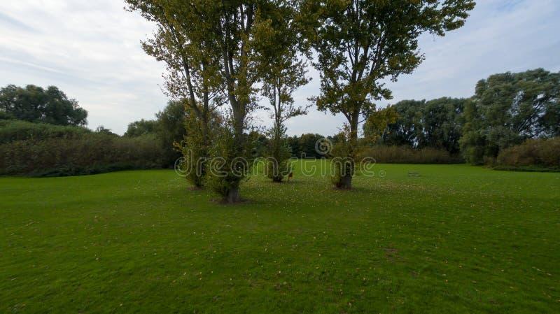 Een park in recent September stock afbeeldingen