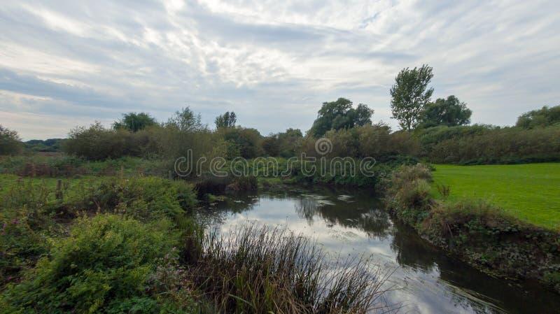 Een park in recent September, mening van een rivier royalty-vrije stock foto's