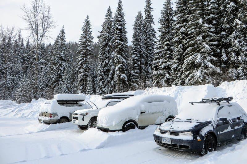 Een parkeerterrein in de bossen van Fernie, Brits Colombia, Canada De auto's, het parkeerterrein, en de omringende bomen zijn beh stock foto