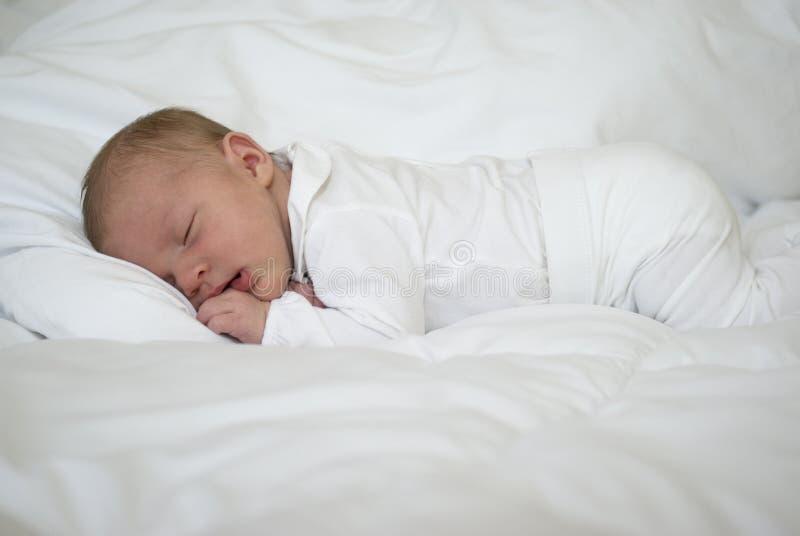 Een pasgeboren babyslaap royalty-vrije stock afbeelding