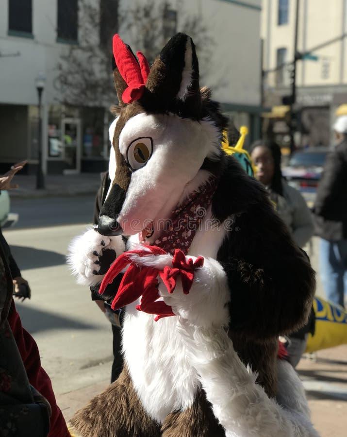 Een persoon in een wolfskostuum bij de Parade van de Savannemlk Dag royalty-vrije stock fotografie