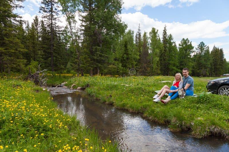 Een picknick op de bank van een bergrivier met groen gras en gele bloemen tegen de achtergrond van naaldbomen en een blauw royalty-vrije stock foto