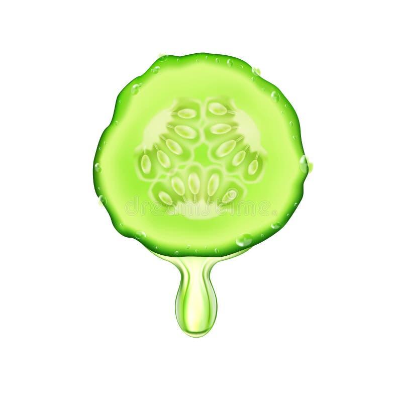 Een plak van realistische sappige komkommer, op een witte achtergrond met dalingen, vector royalty-vrije illustratie